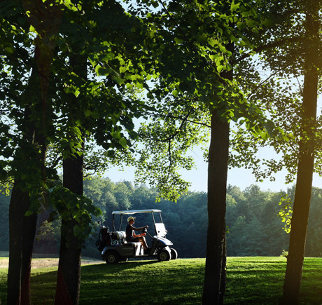 Rent a buggy in Ostravice Fr - Su - 18 holes
